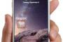 GEOPORC, noticias del sector en tu móvil
